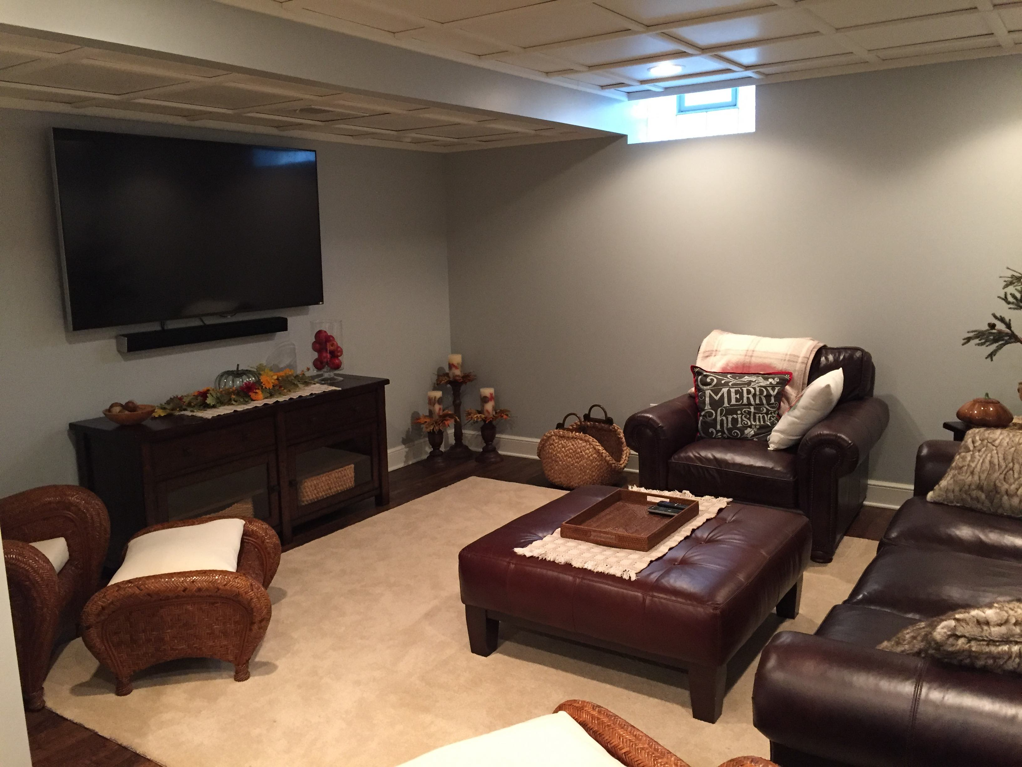 Basement Gallery Organized Home Remodeling